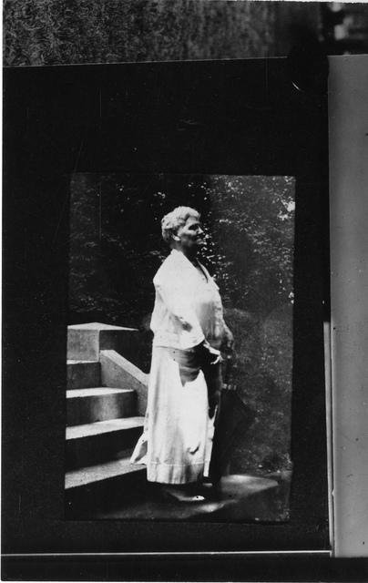 Flora Wambaugh Patterson (1847-1928) [unconfirmed]