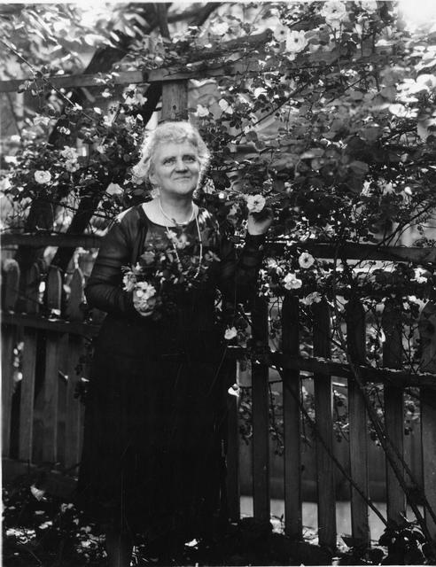 May Gorslin Preston Slosson (1858-1943)