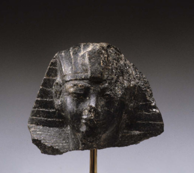 Head from a Statuette of Amenhotep III