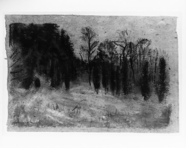 Landscape with Cedars