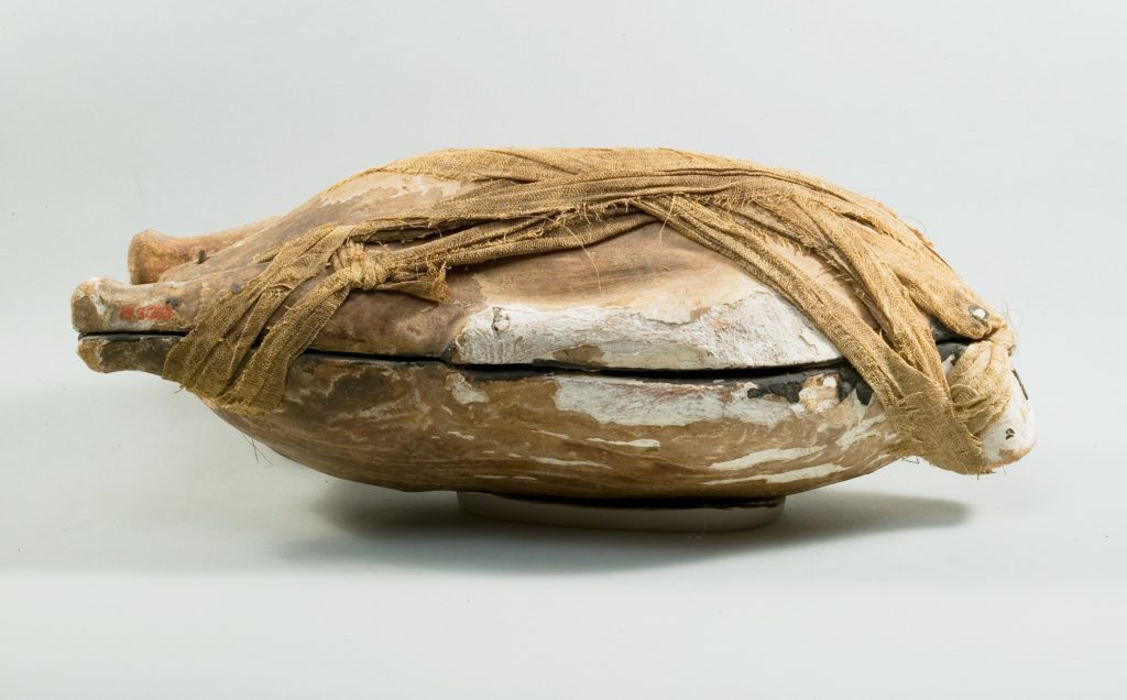 Food Case Probably Containing a Preserved Duck