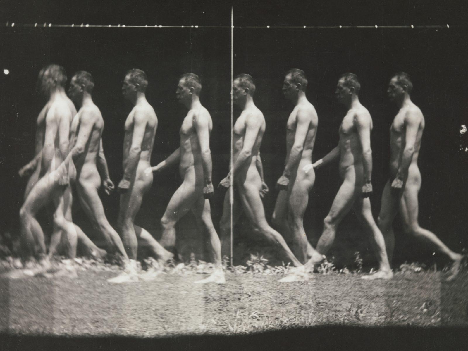 "[Man Walking, ""Stroboscopic"" Photograph]"