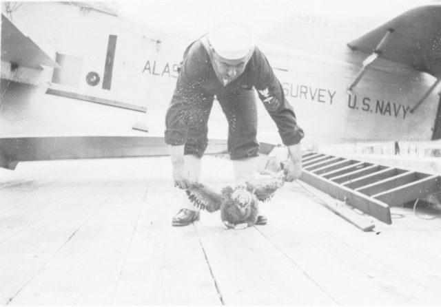 loening aeronautical engineering