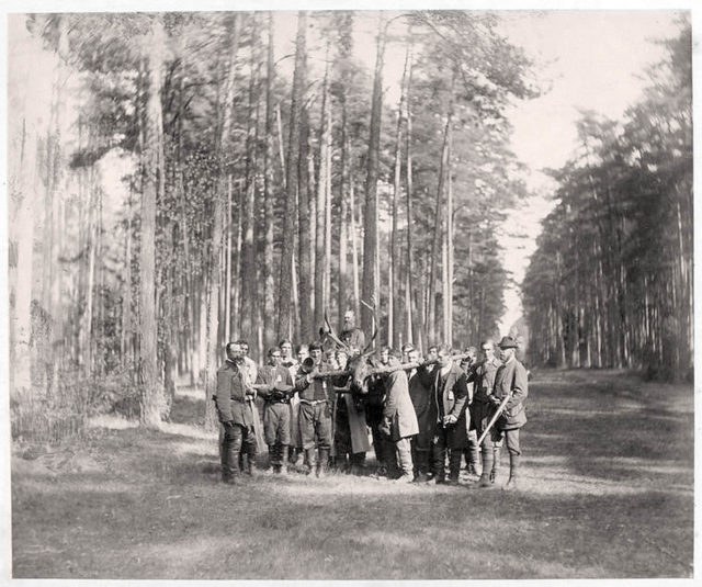 Alexander III after a hunt in Bialowieza