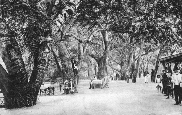 The park on Hadzhibeevsky estuary. Odessa, 1900-1914
