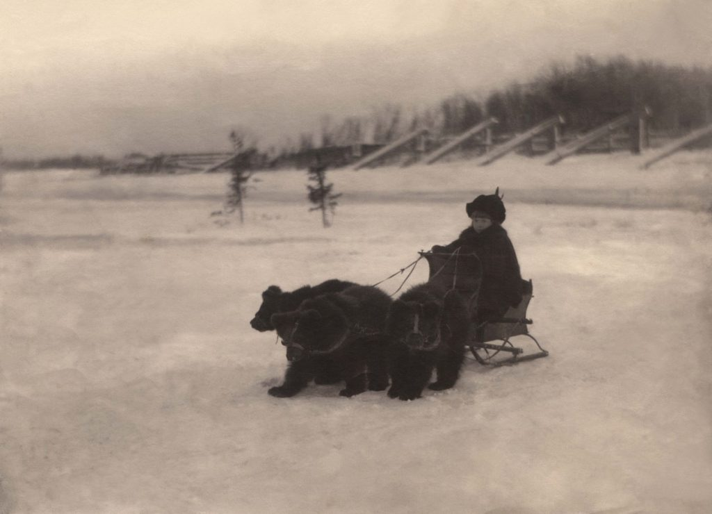 Riding the Bear Sled - Arkhangelsk (Archangel)