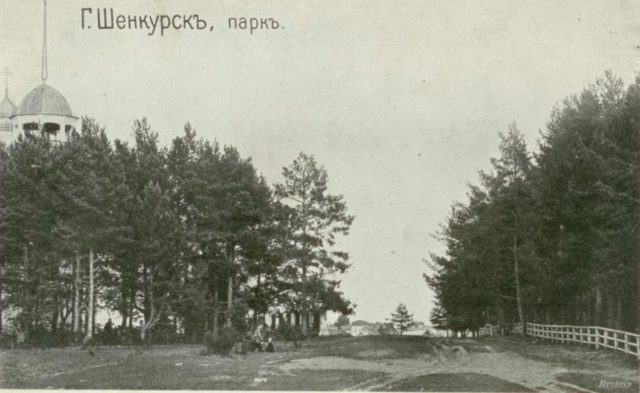 Shenkursk - Park