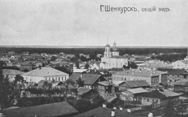 Shenkursk view