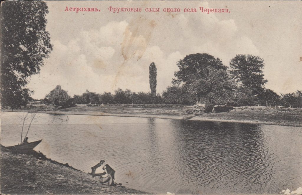 Fruit gardens. Astrakhan, South Russia city on Volga River