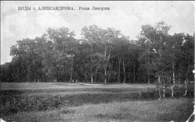 Alexandrov - Grove of Lycoucha.