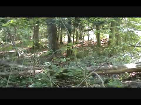 First Freeride video Norco A-line Ontario