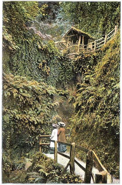Shanklin Chine c1910 - Project Gutenberg eText 17296