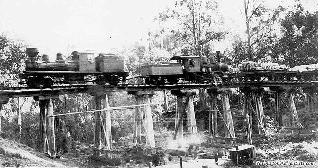 'Little Yarra' Baldwin 2-4-0 locomotive at centre and 'Shay' locomotive of Powelltown Tramway