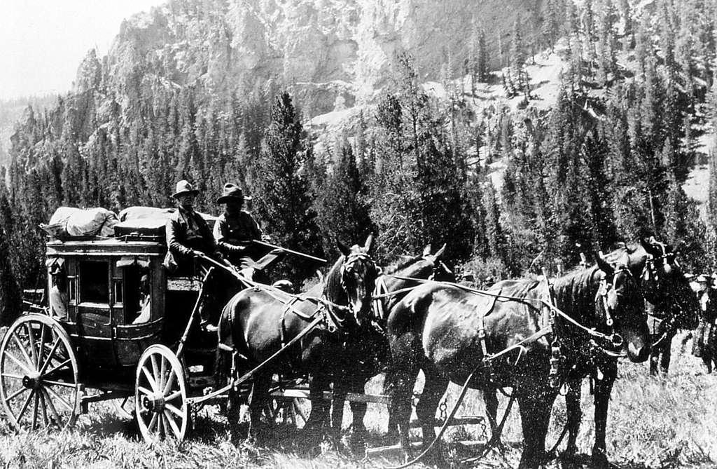 James McBride driving 4-horse coach; Photographer unknown; No date