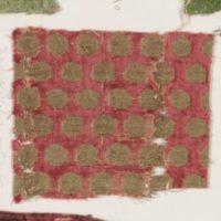 Fragments of velvet