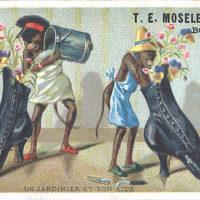 T.E. Moseley & Co.