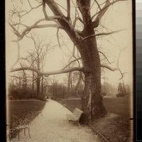 Parc Monceau (8e arr)