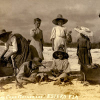 Koreshan girls gathering horseshoe crabs at Estero, Florida