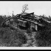 British tank going forward to clear some undergrowth
