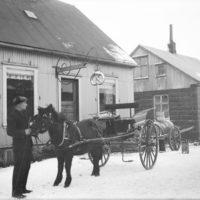 Maður heldur í taum á hesti, 1905-1910