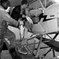 Pilot Dan Cardinal picking up seafood: Naples, Florida