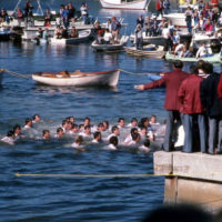 Boys Competing in Contest to Retrieve an Epiphany Cross: Tarpon Springs, Florida