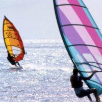 Windsurfers off Smathers Beach: Key West, Florida
